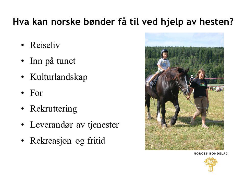 Hva kan norske bønder få til ved hjelp av hesten? •Reiseliv •Inn på tunet •Kulturlandskap •For •Rekruttering •Leverandør av tjenester •Rekreasjon og f