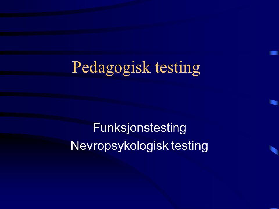 Pedagogisk testing Funksjonstesting Nevropsykologisk testing