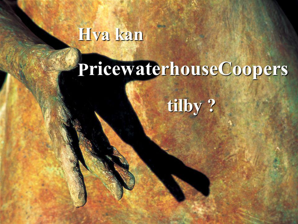 Hva kan P ricewaterhouseCoopers tilby ?
