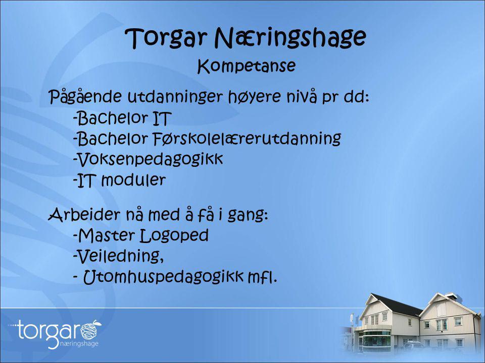 Torgar Næringshage Kompetanse Pågående utdanninger høyere nivå pr dd: -Bachelor IT -Bachelor Førskolelærerutdanning -Voksenpedagogikk -IT moduler Arbe