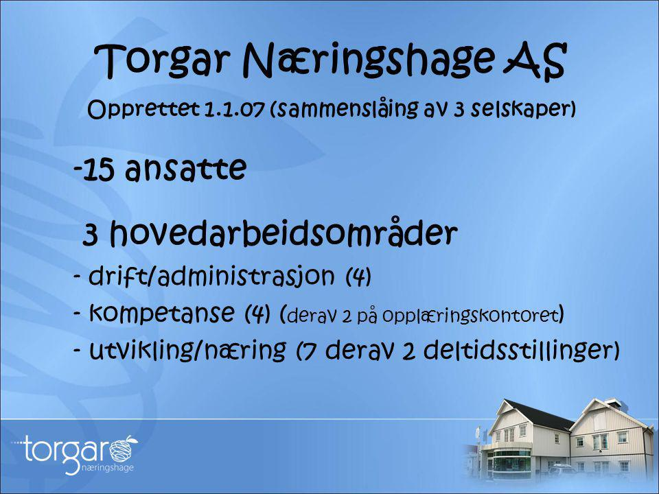 Torgar Næringshage AS Opprettet 1.1.07 (sammenslåing av 3 selskaper) -15 ansatte 3 hovedarbeidsområder - drift/administrasjon (4) - kompetanse (4) ( d