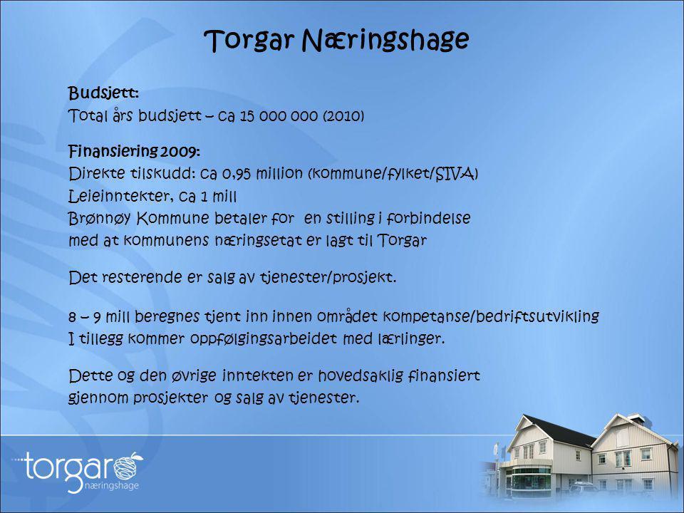 Torgar Næringshage Budsjett: Total års budsjett – ca 15 000 000 (2010) Finansiering 2009: Direkte tilskudd: ca 0,95 million (kommune/fylket/SIVA) Leie