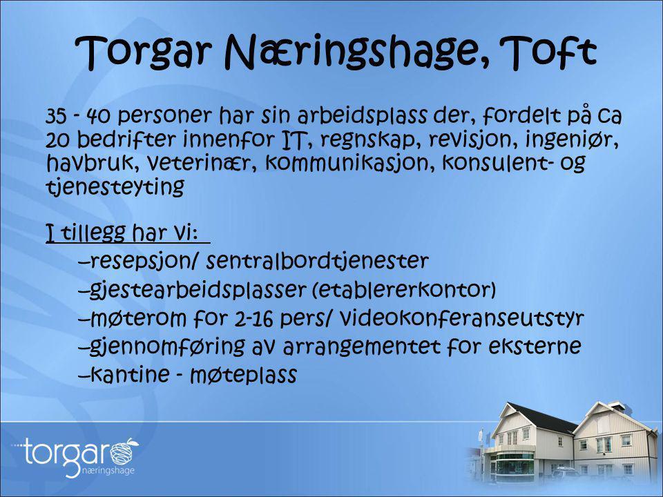 Torgar Næringshage, Toft 35 - 40 personer har sin arbeidsplass der, fordelt på ca 20 bedrifter innenfor IT, regnskap, revisjon, ingeniør, havbruk, vet
