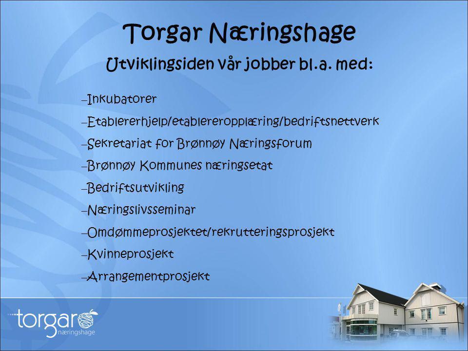 Torgar Næringshage Utviklingsiden vår jobber bl.a. med: – Inkubatorer – Etablererhjelp/etablereropplæring/bedriftsnettverk – Sekretariat for Brønnøy N