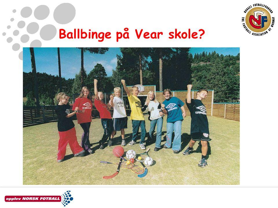 Ballbinge •Hva er en ballbinge.