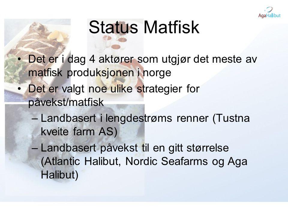 Status Matfisk •Det er i dag 4 aktører som utgjør det meste av matfisk produksjonen i norge •Det er valgt noe ulike strategier for påvekst/matfisk –La
