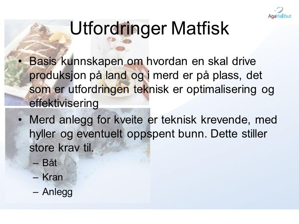Utfordringer Matfisk •Basis kunnskapen om hvordan en skal drive produksjon på land og i merd er på plass, det som er utfordringen teknisk er optimalis