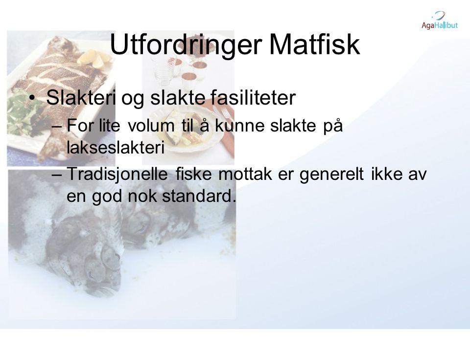 Utfordringer Matfisk •Slakteri og slakte fasiliteter –For lite volum til å kunne slakte på lakseslakteri –Tradisjonelle fiske mottak er generelt ikke