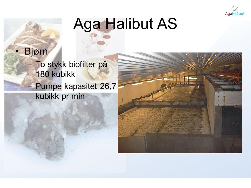 Utfordringer Matfisk •Redusere produksjons tid i sjø fra 3-4 år til 2-3 år.
