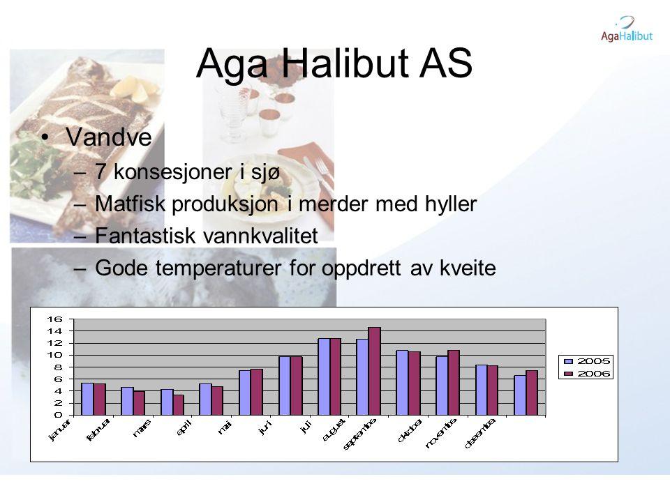 Aga Halibut AS •Vandve –7 konsesjoner i sjø –Matfisk produksjon i merder med hyller –Fantastisk vannkvalitet –Gode temperaturer for oppdrett av kveite