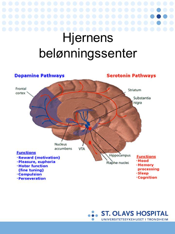 CNS dempende – minus stoffer •Hypnotika/sedativa slik som Valium, Vival, Sobril, Alopam, Imovane med mer •Opioider slik som heroin, morfin, kodein, metadon 20