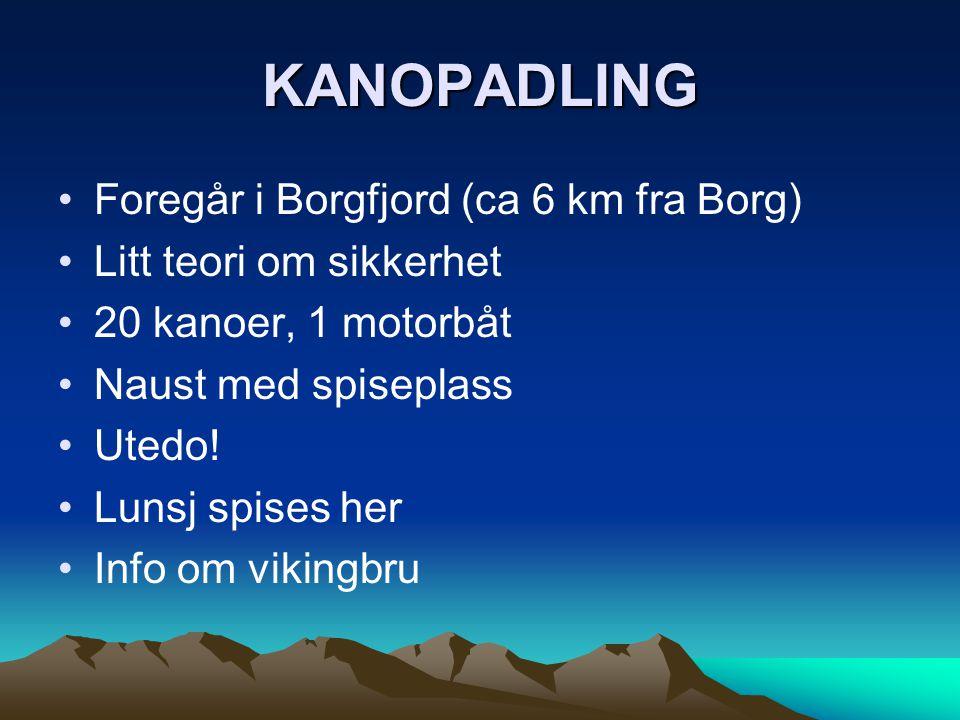 KANOPADLING •Foregår i Borgfjord (ca 6 km fra Borg) •Litt teori om sikkerhet •20 kanoer, 1 motorbåt •Naust med spiseplass •Utedo! •Lunsj spises her •I