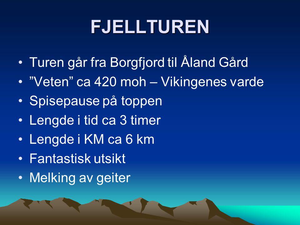 """FJELLTUREN •Turen går fra Borgfjord til Åland Gård •""""Veten"""" ca 420 moh – Vikingenes varde •Spisepause på toppen •Lengde i tid ca 3 timer •Lengde i KM"""