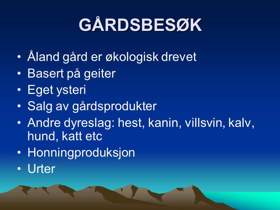 GÅRDSBESØK •Åland gård er økologisk drevet •Basert på geiter •Eget ysteri •Salg av gårdsprodukter •Andre dyreslag: hest, kanin, villsvin, kalv, hund,