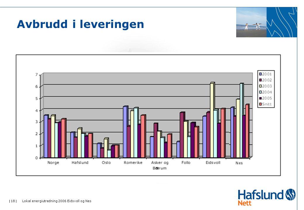  18  Lokal energiutredning 2006 Eidsvoll og Nes Avbrudd i leveringen