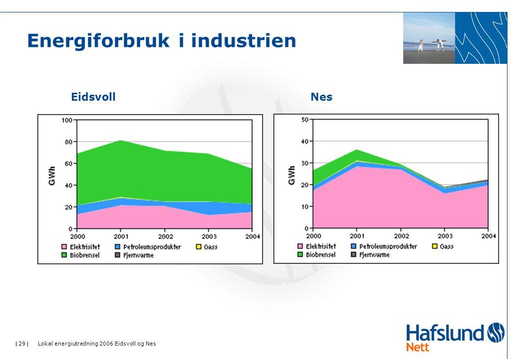  29  Lokal energiutredning 2006 Eidsvoll og Nes Energiforbruk i industrien EidsvollNes