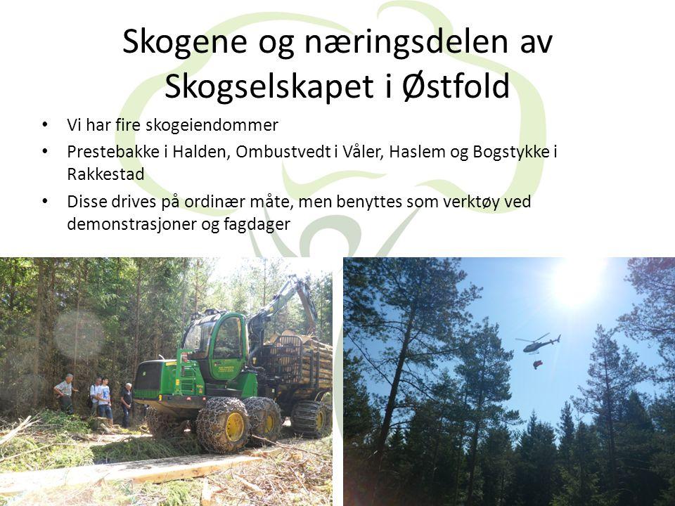 Skogkultur • Har hjelp av arbeidskraft fra Estland til rydding og planting i skogen • Dette startet for 11 år siden da vi drev planteskole og hadde usolgte planter.