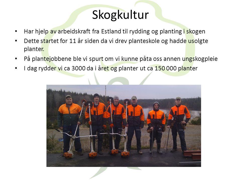 Skogbrannovervåking med fly og overvåking fra Linnekleppen • Vi sørger for overvåking med fly.