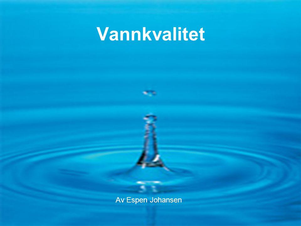 Flaske- eller springvann F1-13-065 •Drikkevannet i Norge blir som regel tappet fra store innsjøer, og blir kalt råvann før det har gjenomgått de nødvendige renselses prosedyrer som må til for at det kan slippes ut til forbrukerne •Generelt bra råvann i Norge