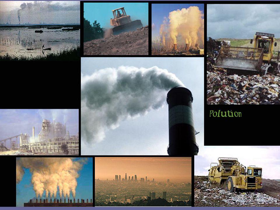 Flaske- eller springvann F1-13-0628 Forbruk av flaskevann i verden, 1999 og 2004 Flaskevannsforbruk i verdens ledende land, 1999 og 2004