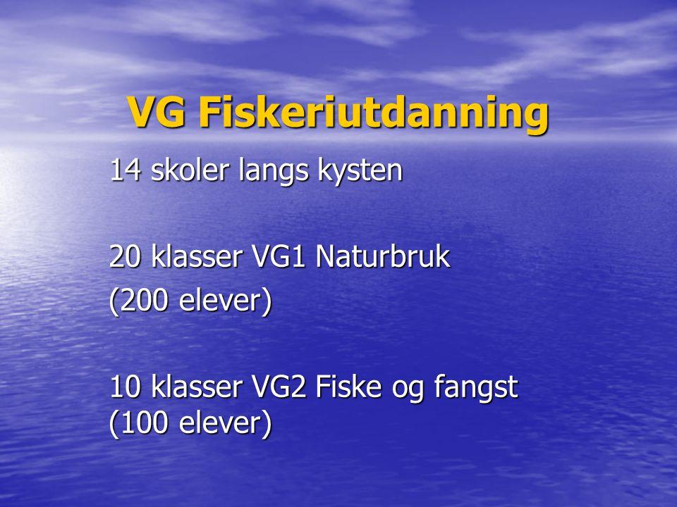 VG Fiskeriutdanning 14 skoler langs kysten 20 klasser VG1 Naturbruk (200 elever) 10 klasser VG2 Fiske og fangst (100 elever)