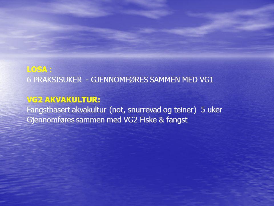 LOSA : 6 PRAKSISUKER - GJENNOMFØRES SAMMEN MED VG1 VG2 AKVAKULTUR: Fangstbasert akvakultur (not, snurrevad og teiner) 5 uker Gjennomføres sammen med V