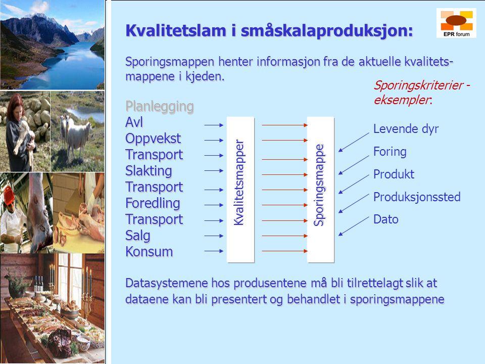 Kvalitetslam i småskalaproduksjon: Sporingsmappen henter informasjon fra de aktuelle kvalitets- mappene i kjeden. PlanleggingAvlOppvekstTransportSlakt