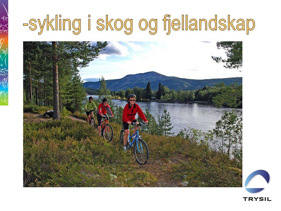Sykkelhistorie i Trysil •1992Idrettslaget utgir beskrivelse over 10 ruter.