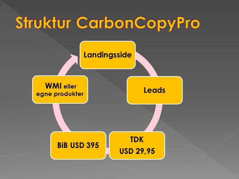LandingssideLeads TDK USD 29,95 BiB USD 395 WMI eller egne produkter
