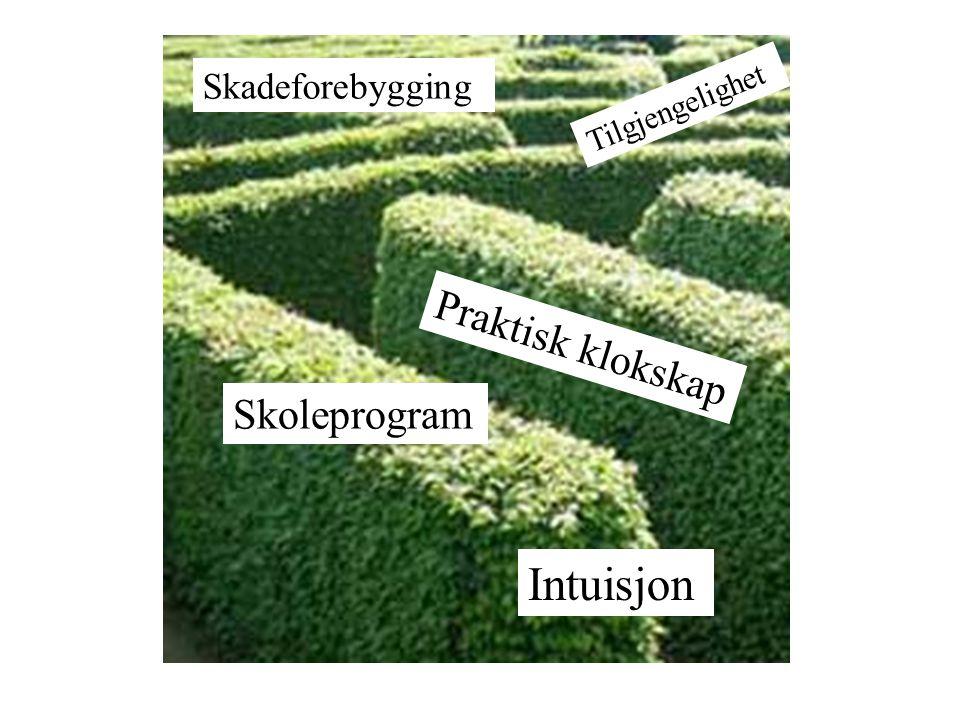 Praktisk klokskap Skoleprogram Skadeforebygging Tilgjengelighet Intuisjon