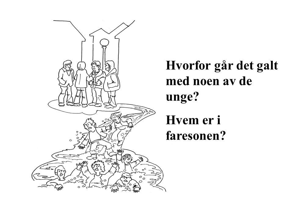 Gjennomsnittlig årlig forbruk målt i liter ren alkohol for ungdom i Norge i alderen 15 – 20 år Kilde: Sirus