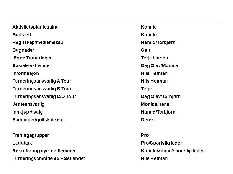 Grovskisse for aktiviteter 2007 •Rekruttering •Treningsaktiviteter •Samlinger •Turneringer •Markedsføring •Finansiering •Budsjett