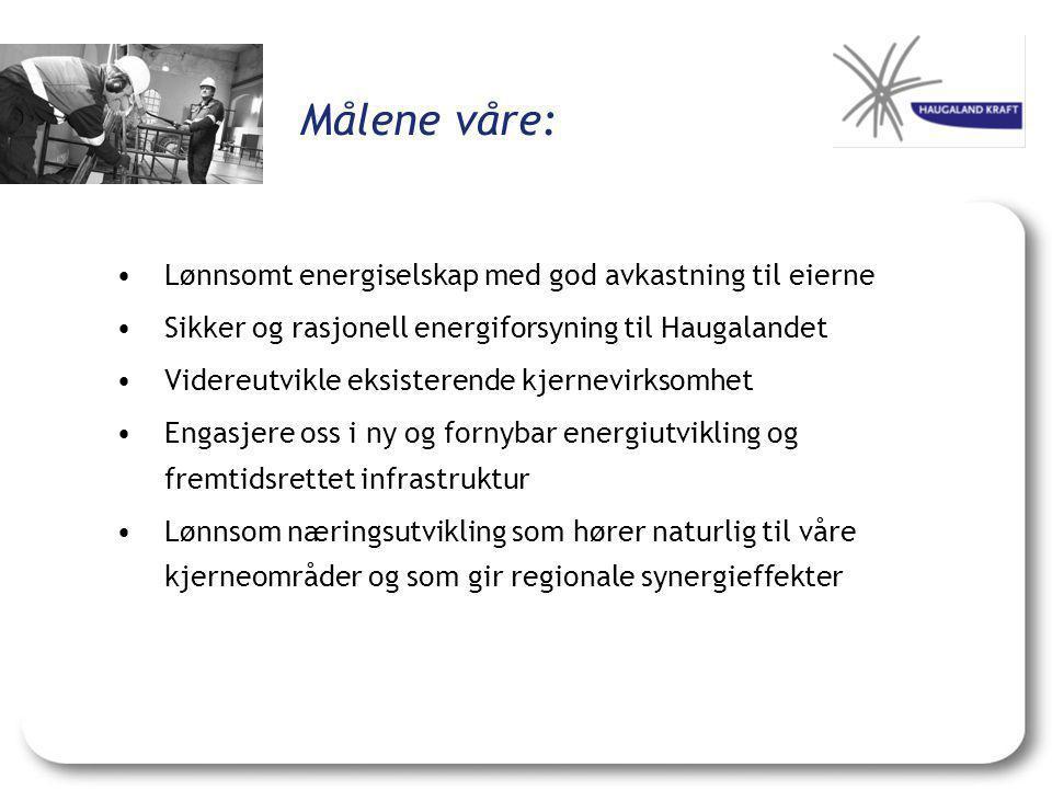 Målene våre: •Lønnsomt energiselskap med god avkastning til eierne •Sikker og rasjonell energiforsyning til Haugalandet •Videreutvikle eksisterende kjernevirksomhet •Engasjere oss i ny og fornybar energiutvikling og fremtidsrettet infrastruktur •Lønnsom næringsutvikling som hører naturlig til våre kjerneområder og som gir regionale synergieffekter