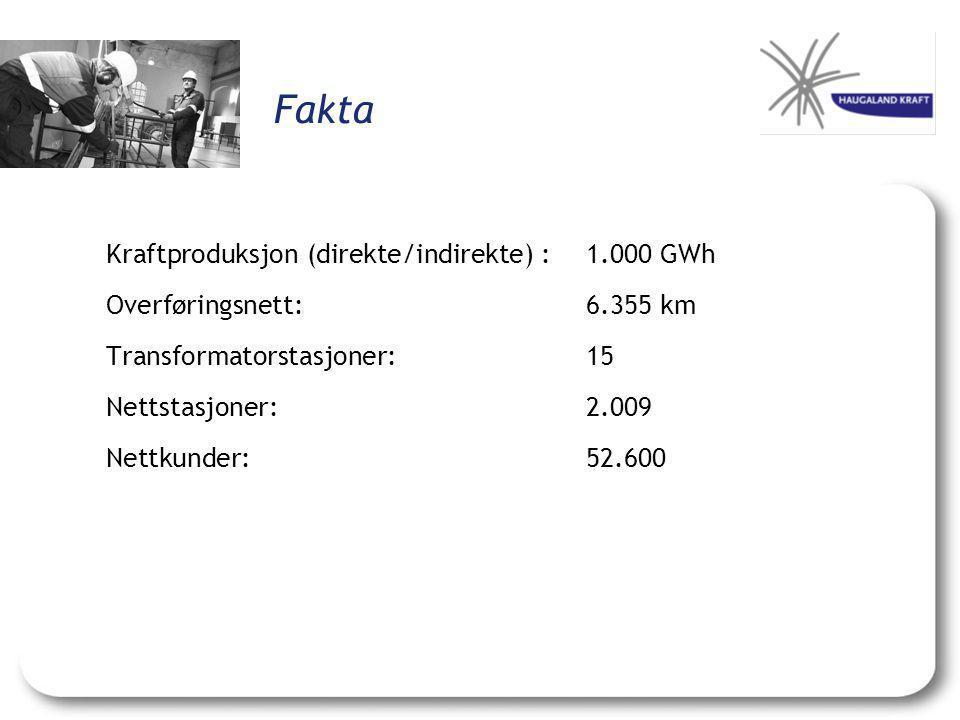 Fakta Kraftproduksjon (direkte/indirekte) :1.000 GWh Overføringsnett:6.355 km Transformatorstasjoner:15 Nettstasjoner:2.009 Nettkunder:52.600