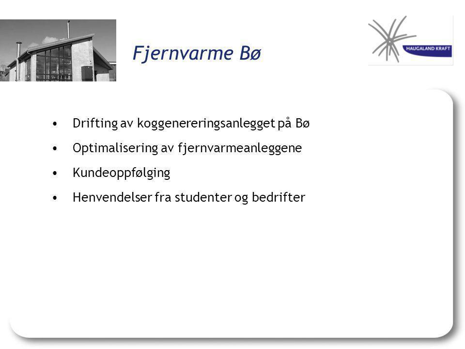 Fjernvarme Bø •Drifting av koggenereringsanlegget på Bø •Optimalisering av fjernvarmeanleggene •Kundeoppfølging •Henvendelser fra studenter og bedrift