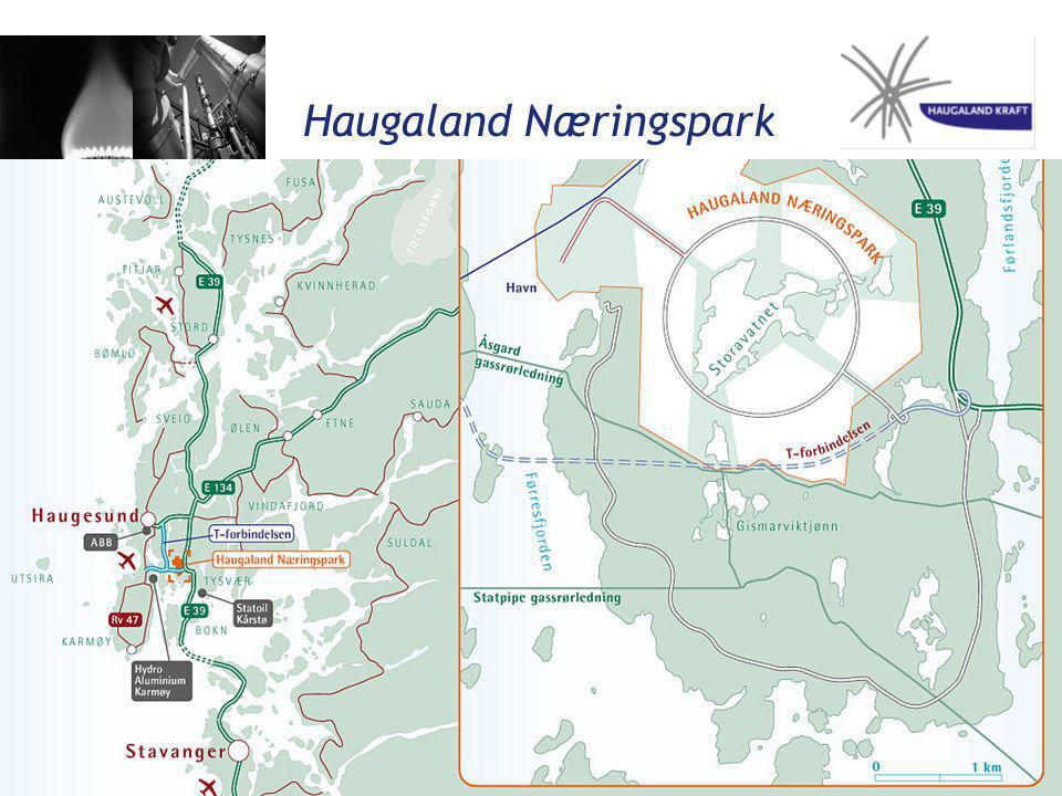 Haugaland Næringspark Gassflamme