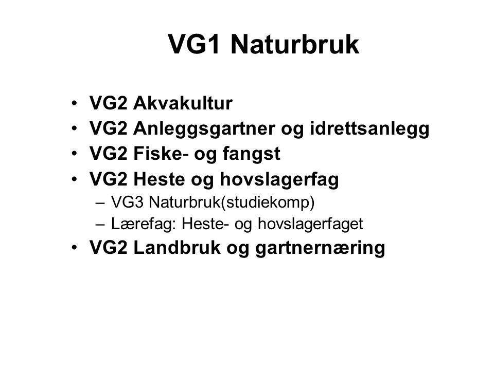 VG1 Naturbruk •VG2 Akvakultur •VG2 Anleggsgartner og idrettsanlegg •VG2 Fiske- og fangst •VG2 Heste og hovslagerfag –VG3 Naturbruk(studiekomp) –Lærefa