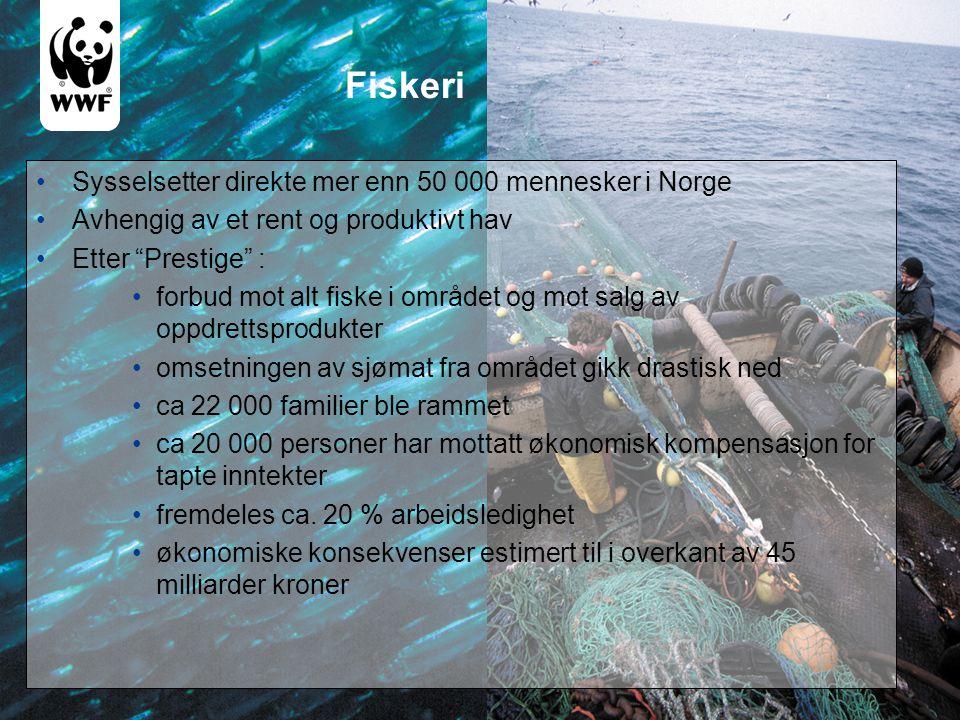 """Fiskeri •Sysselsetter direkte mer enn 50 000 mennesker i Norge •Avhengig av et rent og produktivt hav •Etter """"Prestige"""" : •forbud mot alt fiske i områ"""