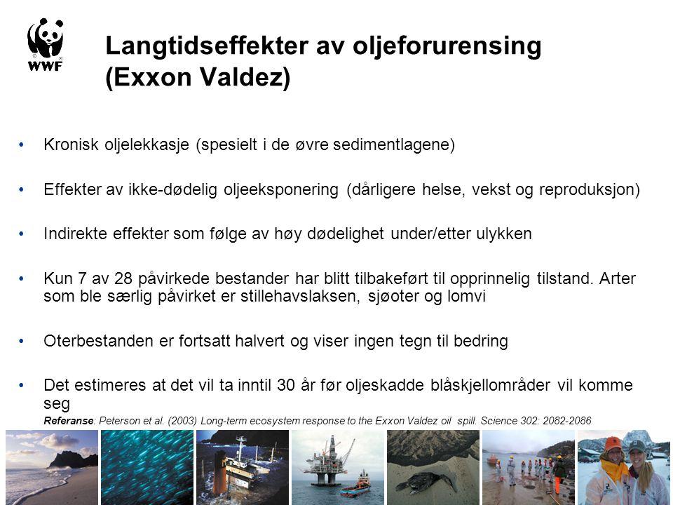 Langtidseffekter av oljeforurensing (Exxon Valdez) •Kronisk oljelekkasje (spesielt i de øvre sedimentlagene) •Effekter av ikke-dødelig oljeeksponering (dårligere helse, vekst og reproduksjon) •Indirekte effekter som følge av høy dødelighet under/etter ulykken •Kun 7 av 28 påvirkede bestander har blitt tilbakeført til opprinnelig tilstand.