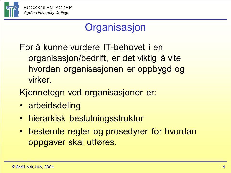 HØGSKOLEN I AGDER Agder University College © Bodil Ask, HiA, 20044 Organisasjon For å kunne vurdere IT-behovet i en organisasjon/bedrift, er det vikti