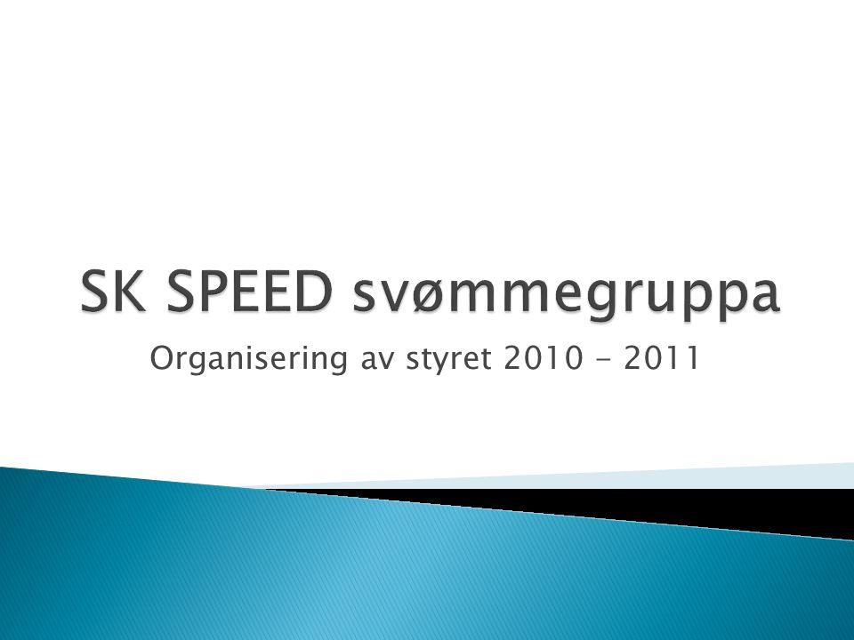 Organisering av styret 2010 - 2011