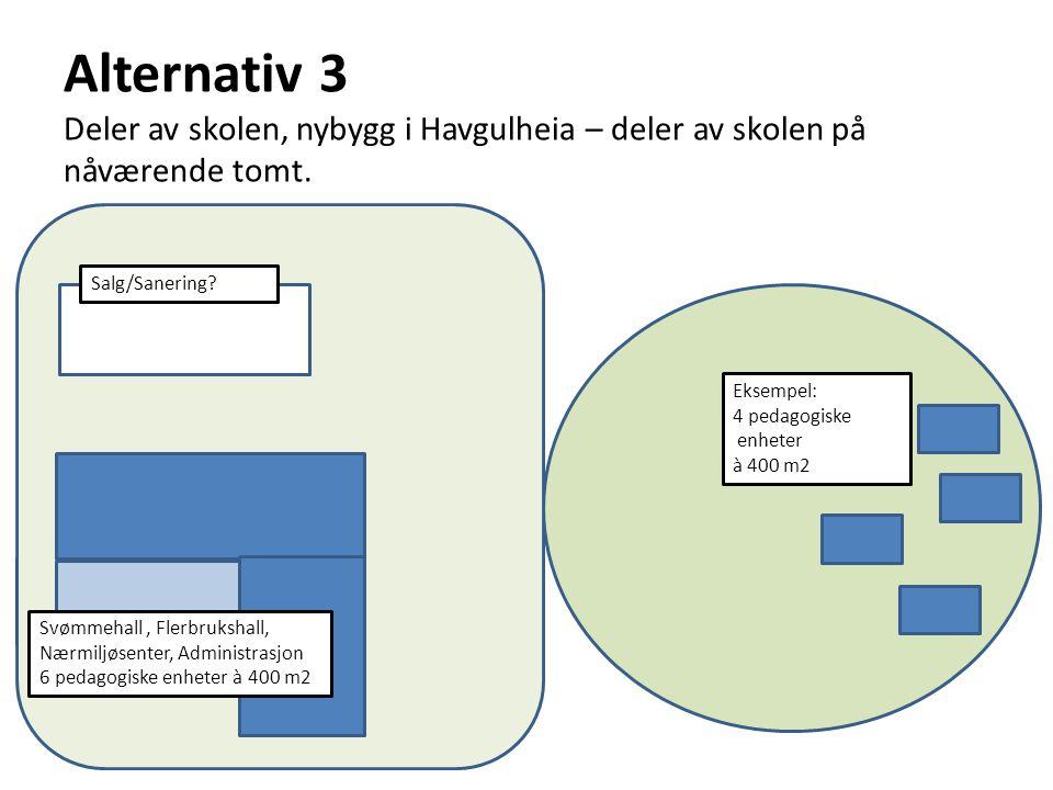 Alternativ 3 Deler av skolen, nybygg i Havgulheia – deler av skolen på nåværende tomt.