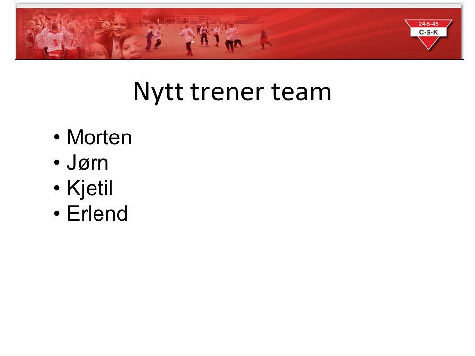 Opplegg for sesongen Spillergruppa - 14-16 spillere Serien - Stiller med et lag i 9'er i 2.