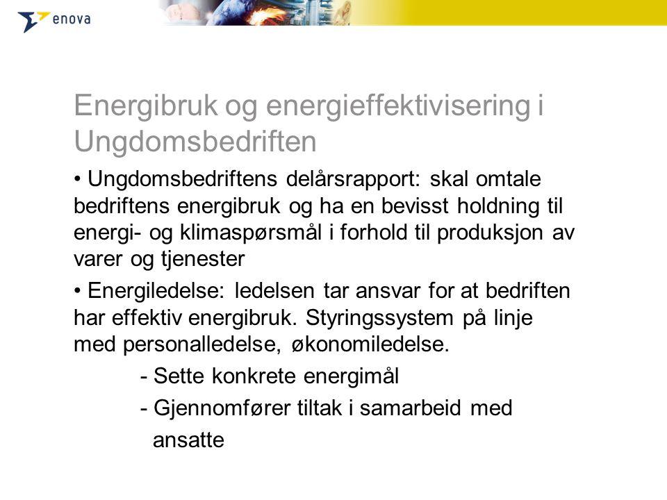 Energibruk og energieffektivisering i Ungdomsbedriften • Ungdomsbedriftens delårsrapport: skal omtale bedriftens energibruk og ha en bevisst holdning til energi- og klimaspørsmål i forhold til produksjon av varer og tjenester • Energiledelse: ledelsen tar ansvar for at bedriften har effektiv energibruk.