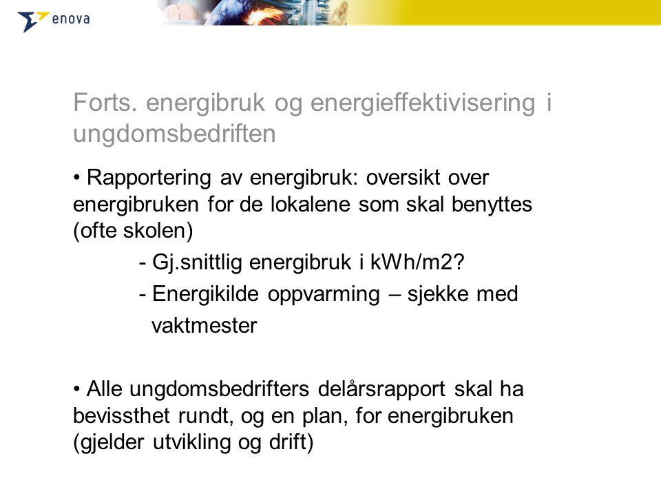Forts. energibruk og energieffektivisering i ungdomsbedriften • Rapportering av energibruk: oversikt over energibruken for de lokalene som skal benytt