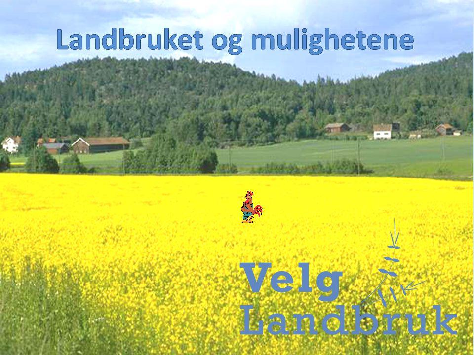 www.velglandbruk.no