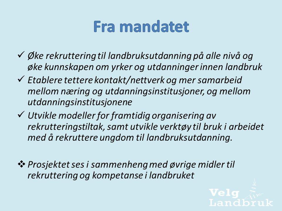  Midler tildelt i jordbruksavtalen 2010  Prosjektleder fra 1.mai.2011  3-årig prosjekt  Tre prosjekteiere:  Landbruks- og matdepartementet  Norsk Bonde- og Småbrukarlag  Norges Bondelag Prosjektleder ansatt i Norges Bondelag