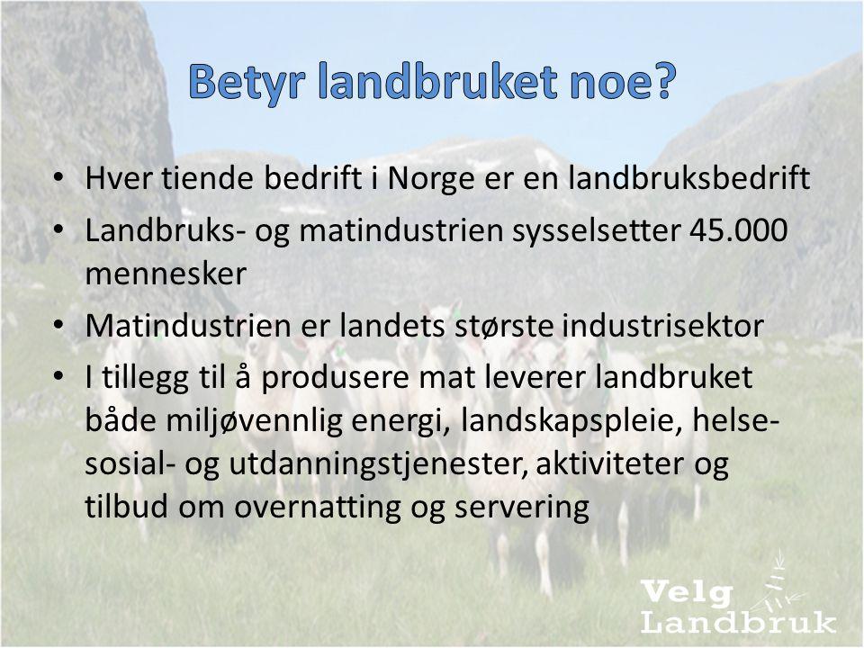 • Hver tiende bedrift i Norge er en landbruksbedrift • Landbruks- og matindustrien sysselsetter 45.000 mennesker • Matindustrien er landets største industrisektor • I tillegg til å produsere mat leverer landbruket både miljøvennlig energi, landskapspleie, helse- sosial- og utdanningstjenester, aktiviteter og tilbud om overnatting og servering