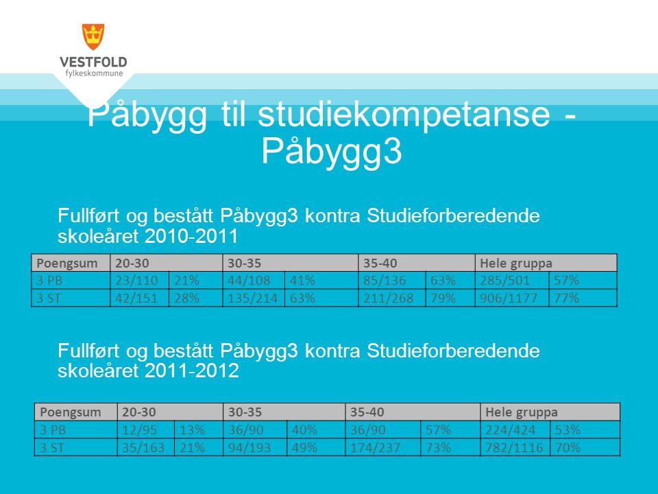 Påbygg 3 skoleåret 2013 - 2014 Flere veier inn i Høyskolesystemet: Y-veien – Fagskole – Forkurs Påbygg 4 – Studiekompetanse etter avlagt fagbrev videreført jamfør Stm 20 SkolePlasser Sande< 30 Holmestrand< 30 Horten< 60 Færder< 60 Sandefjord< 60 Thor Heyerdahl< 60 SUM< 300