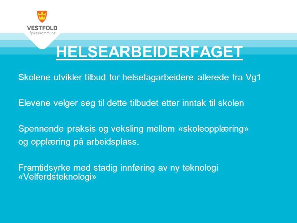 Minoritetsspråklige •VG1 over to år •Alle med rett •Yrkesfaglig løp •Velge på nytt etter første året •Tilbud ved Horten, Greveskogen og Sandefjord •Thor Heyerdahl har tilbud på grunnskolenivå i samarbeide med kommunen